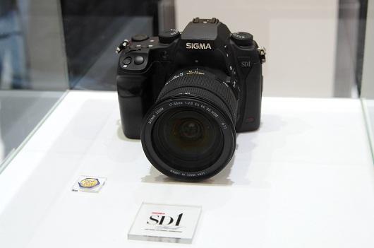 sd1.jpg